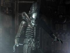 """Ultimate Alien """"Big Chap"""" 40th Anniversary Figure Neca"""