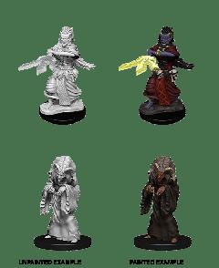 Night Hag & Dusk Hag | D&D Nolzur's Marvelous Unpainted Miniatures (W14) | Dungeons & Dragons