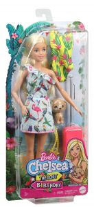 Barbie| Barbie And Chelsea The Lost Birthday