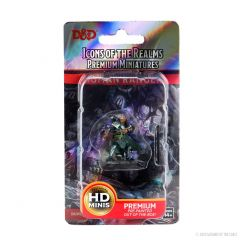 Human Ranger (He/Him/They/Them) | Icons Of The Realms Premium Figure | Wave 4 | Wizkids