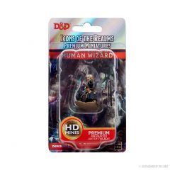Human Wizard (He/Him/They/Them) | Icons Of The Realms Premium Figure | Wave 4 | Wizkids