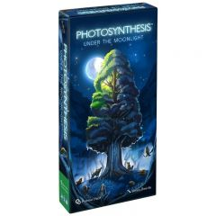 Under the Moonlight | Photosynthesis  Expansion